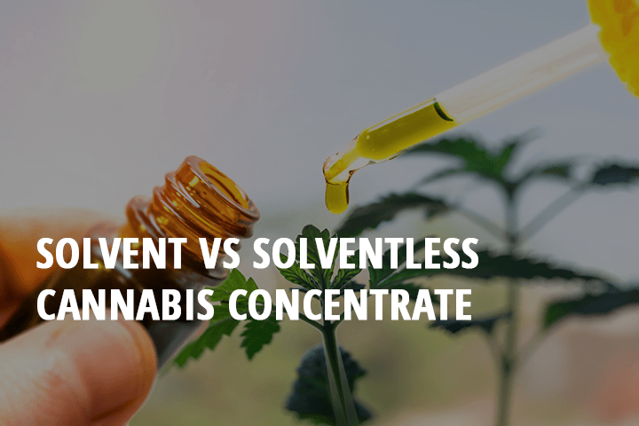 solvent cannabis concentrates