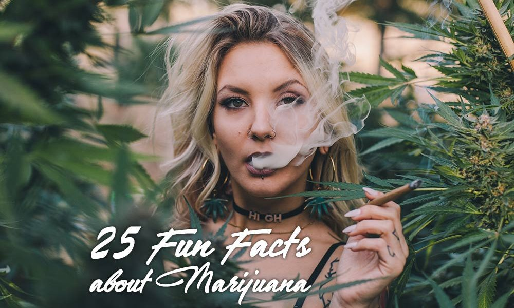 25 fun facts about marijuana