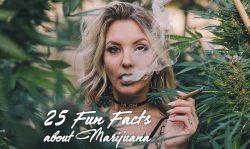 25 fun facts about marijuana