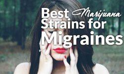 best marijuana strains migraines