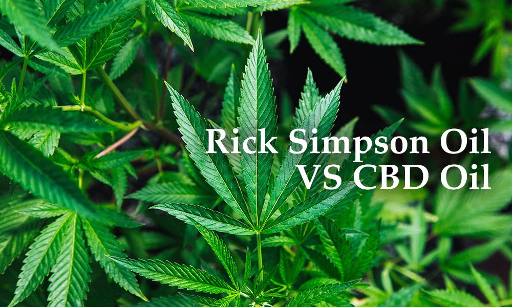 rick simpson oil cbd oil