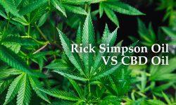 rick simpson oil cbd oil