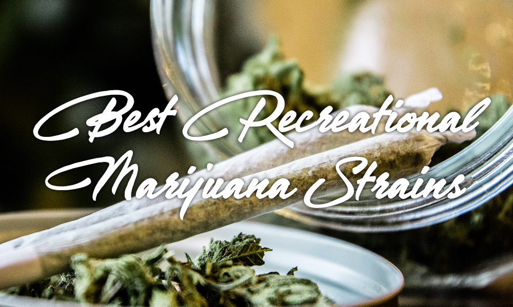 best recreational marijuana strains