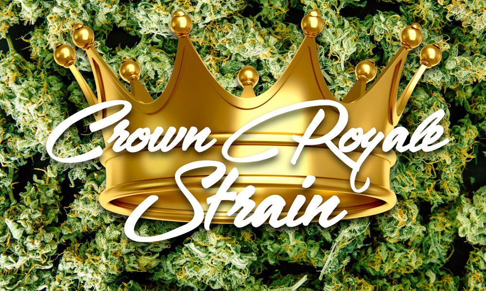 crown royale cannabis strain