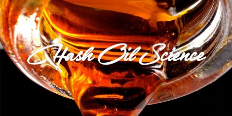 hash oil science