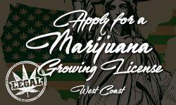 marijuana growing license west coast