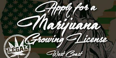 marijuana growing license west coast