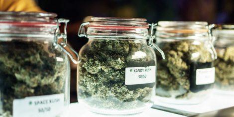 cannabis strains for sleep