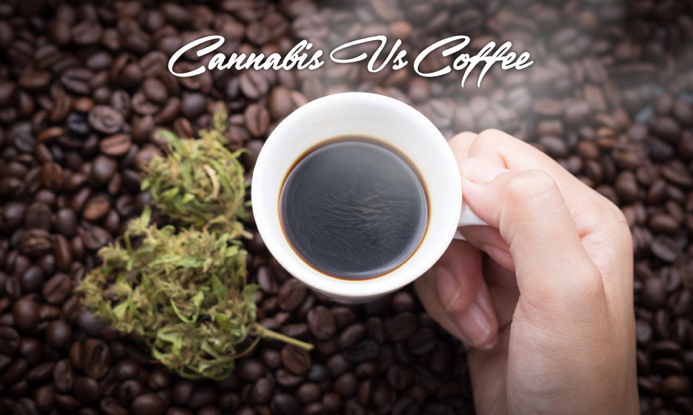 cannabis versus coffee