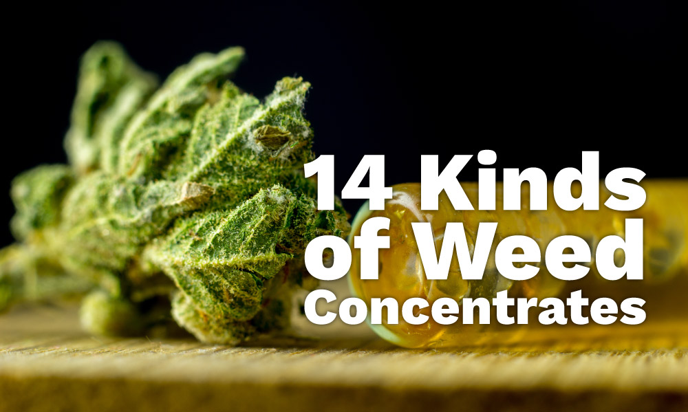 14 kinds of weed concentrates