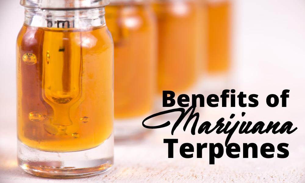 benefits marijuana terpenes
