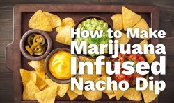 marijuana infused nacho dip
