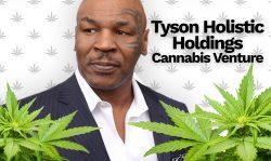 tyson holistic holdings cannabis venture