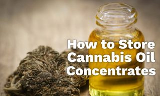 storing cannabis oil concentrates