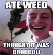 Ate Weed