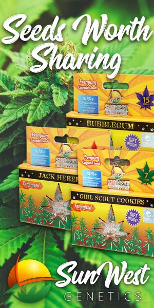 sunwest premium cannabis seeds